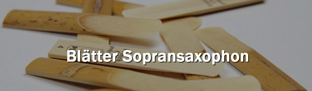 Blätter Sopransaxophon